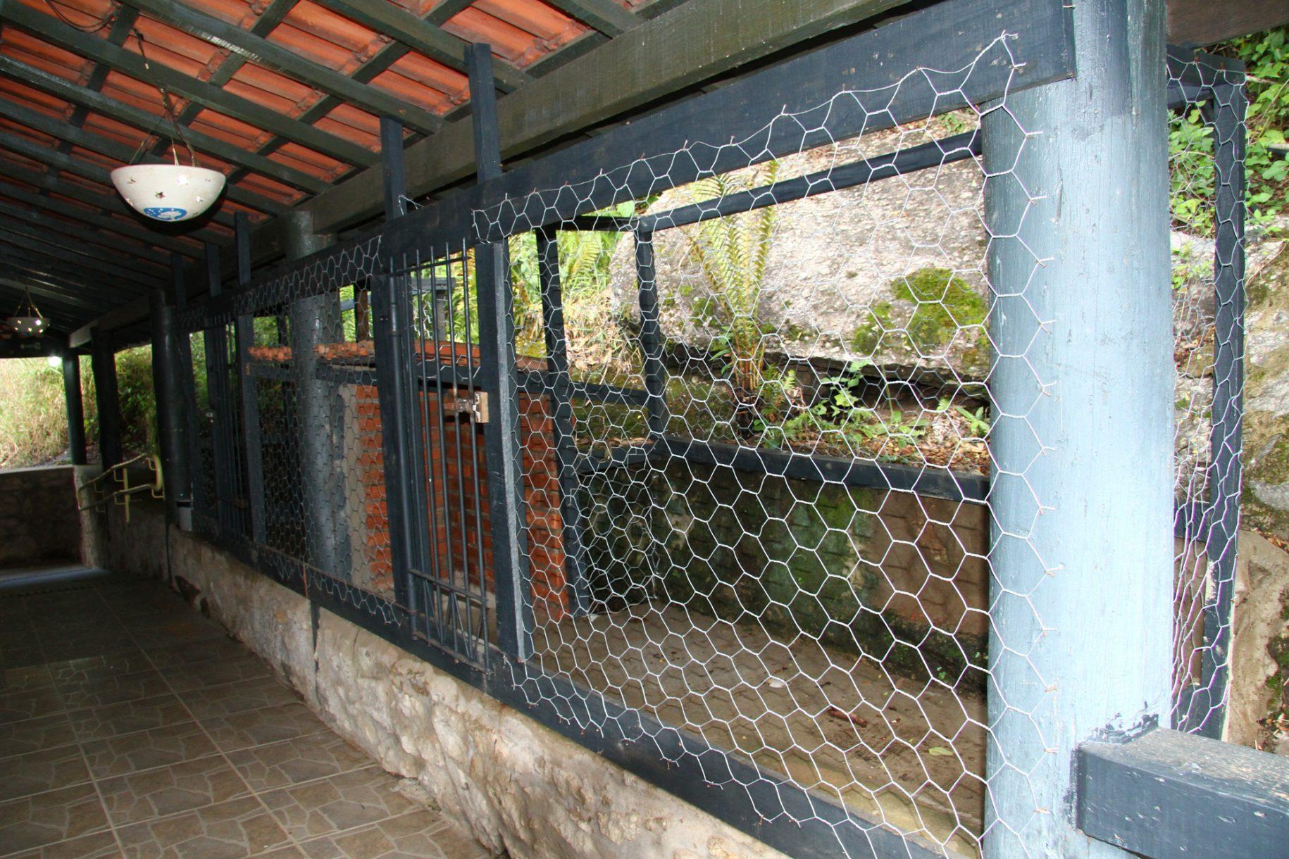 A foto mostra um canil do hotel fazenda parque dos sonhos