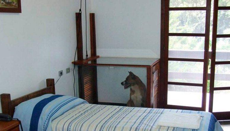 Chalé acoplado com canil Vista do quarto com cachorro no canil na parte interna
