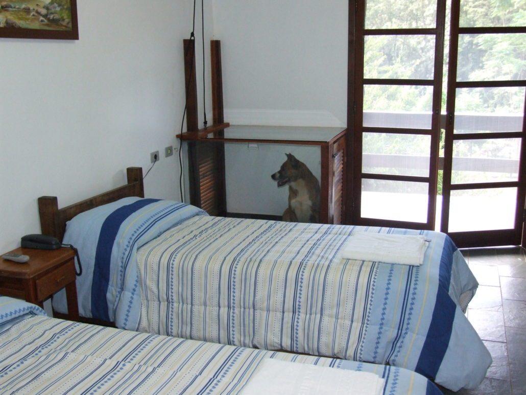 Chalé do hotel fazenda campo dos sonhos com canil acoplado e um cachorro na parte interna do canil que fica pra dentro do chalé