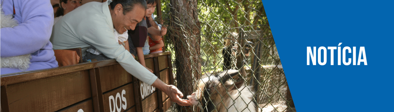 Banner do passeio de trator com um homem alimentando os animais com as própias mãos, está escrito Notícia no banner