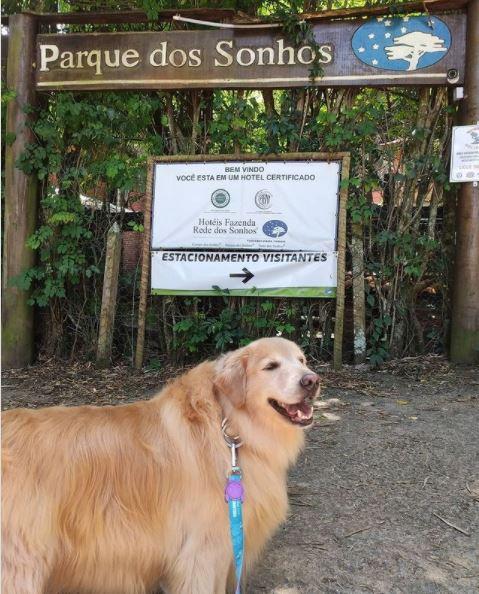 Cachorro na entrada do Parque dos Sonhos Hotel Fazenda Pet Friendly em Socorro-SP