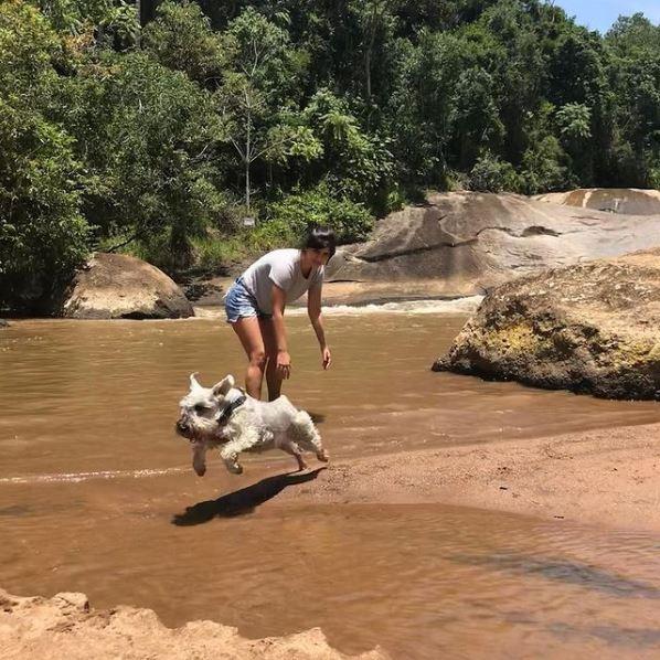 Cachorro brincando na Cachoeira do Parque dos Sonhos Hotel Fazenda Pet Friendly em Socorro-SP